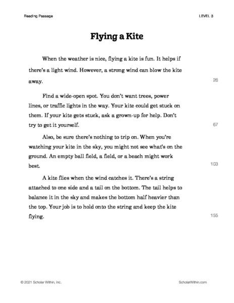 Grade 3: Flying a Kite (Instructor)